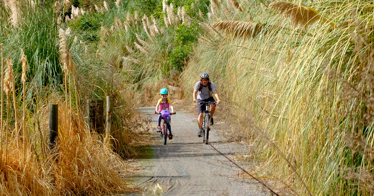 Rail Trail to Waihi